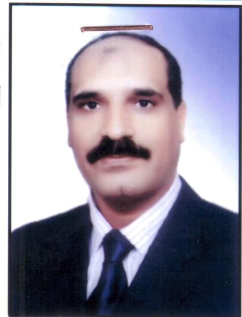 ربيع محمد إسماعيل